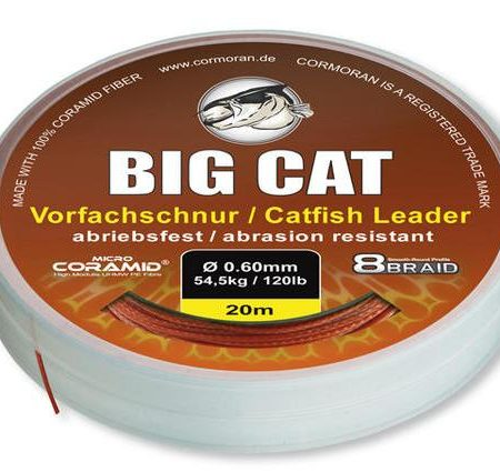 big-cat-fonott-eloke